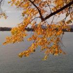 Retour le long du lac
